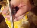 Úprava zobáku