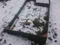 Zima v únoru